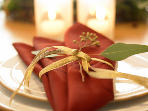 fancy dinner napkin placesetting