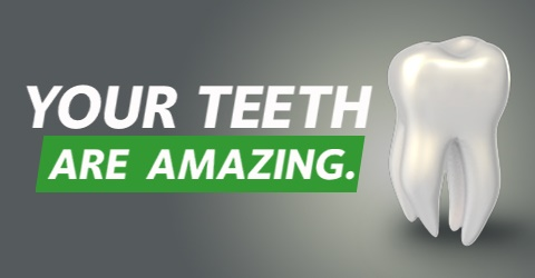 "Image of tooth with caption: ""Your teeth are amazing."""