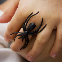 Child wearing a spider ring