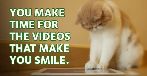 "Image of cat looking at an ipad with the caption: ""You make time for the videos that make you smile."""